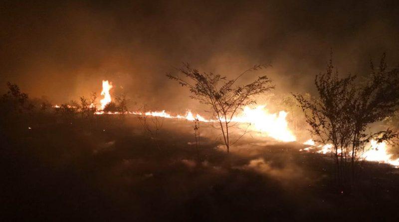 Destacan resultados de la  temporada de incendios 2019